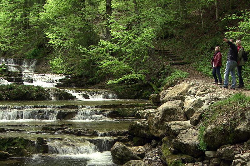 Waldzauberweg Hintersee entlang des Baches