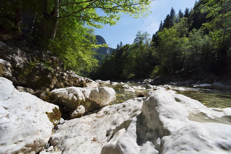 Kaiserklamm Bild 13: Im Vordergrund befinden sich Steine und im Hintergrund ein Fluss und Wälder bzw. einzelne Bäume