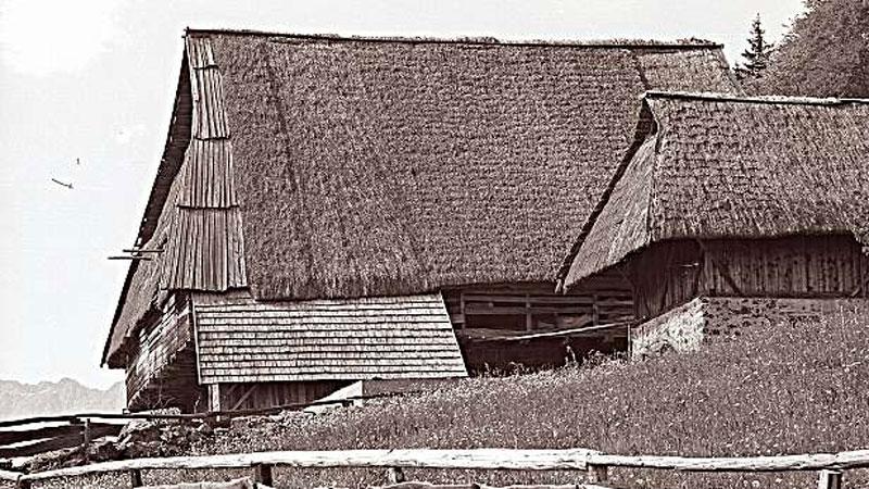 Bauernhaus, Architektur, Hafling