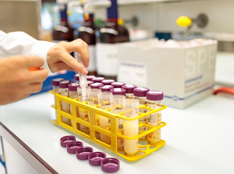 Untersuchung von Eiern auf Fipronil-Belastung