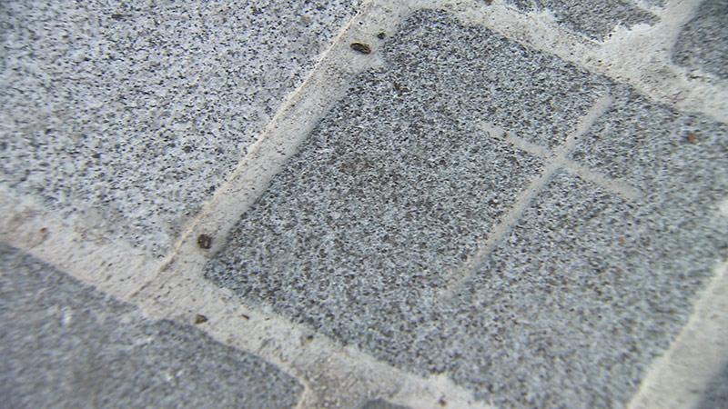 Hans Gasser Platz Grabsteine Pflasterung