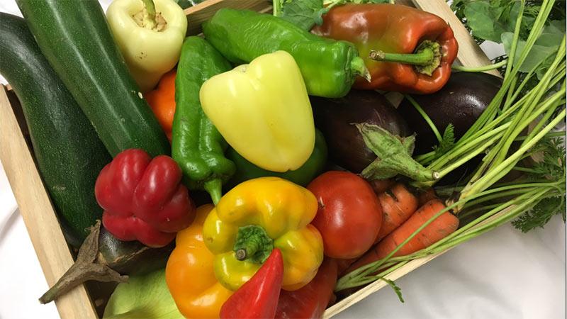Gemüse Kasnudeln
