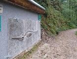 Schautafel mit Fischsaurier am Geoschauweg in der Glasenbachklamm bei Elsbethen