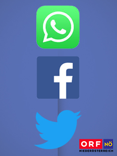 Service Factbox Social Media