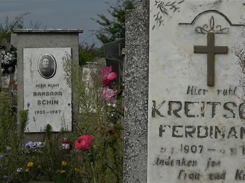 NÖ leben in der Ukraine