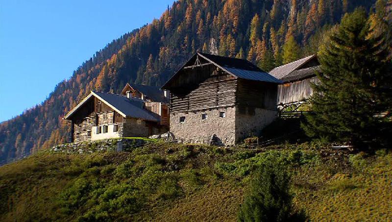 Bauernhofensemble auf Berghang