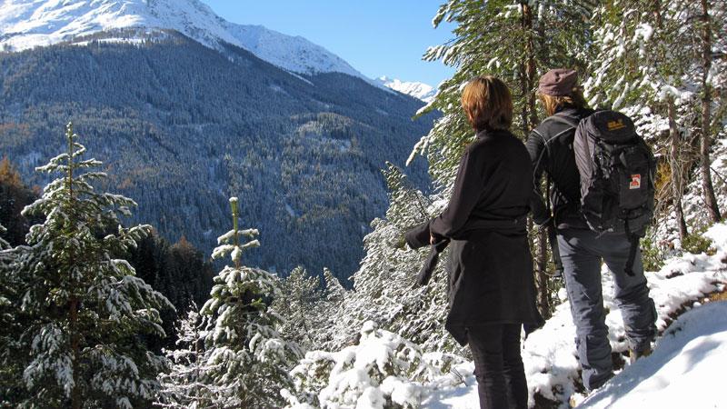 Wandertipp Große Baumwiesen