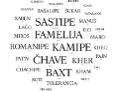 wörter in Romanes