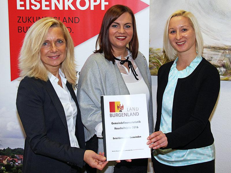 Gemeindefinanzstatistik 2016 Novosel Eisenkopf  Bednar