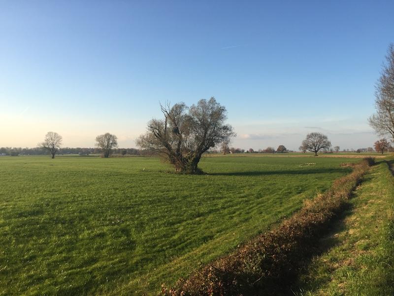 Ackerland - hier soll der Fußballplatz entstehen