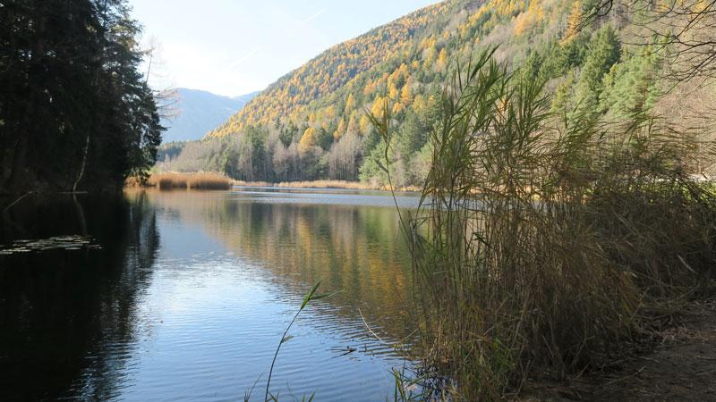Am Keschtnweg zum Vahrner See