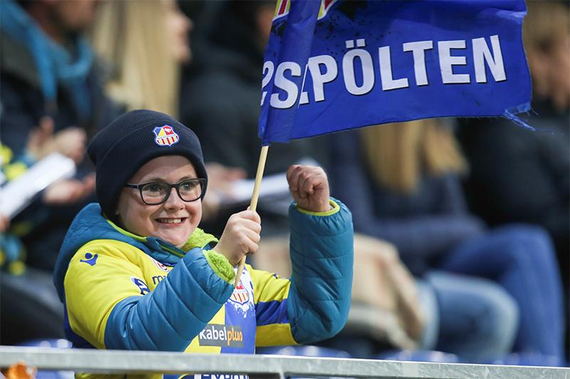 Bundesliga Fußball SKN Fan
