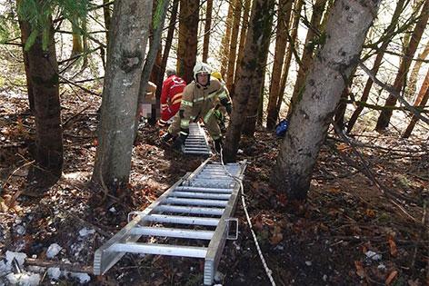 Feuerwehrleute auf Böschung mit Leitern
