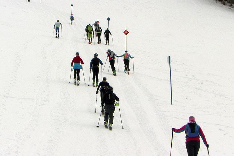 Skitourengeher in Gruppe am Rand einer Skipiste