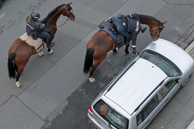Polizeipferde: Hietzing möglicher Standort