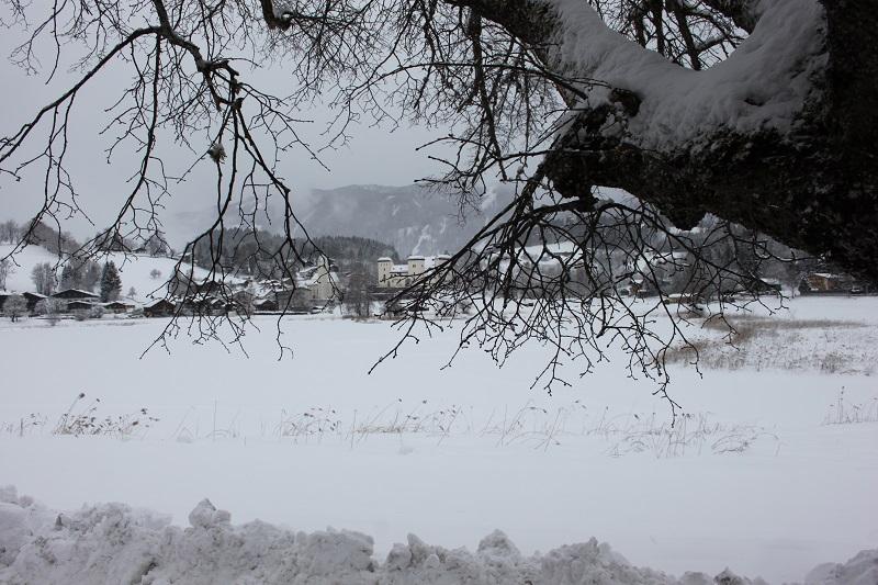 Eisstockschießen, Goldegg, Schloss, Pferdeschlitten