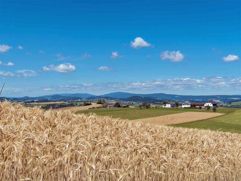 Erlebnis Österreich Bioregion Mühlviertel