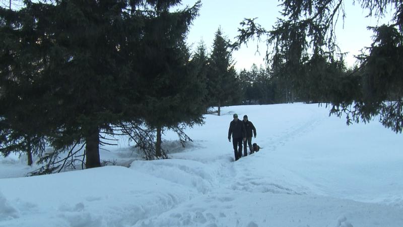 Wanderer mit Hund im Schnee