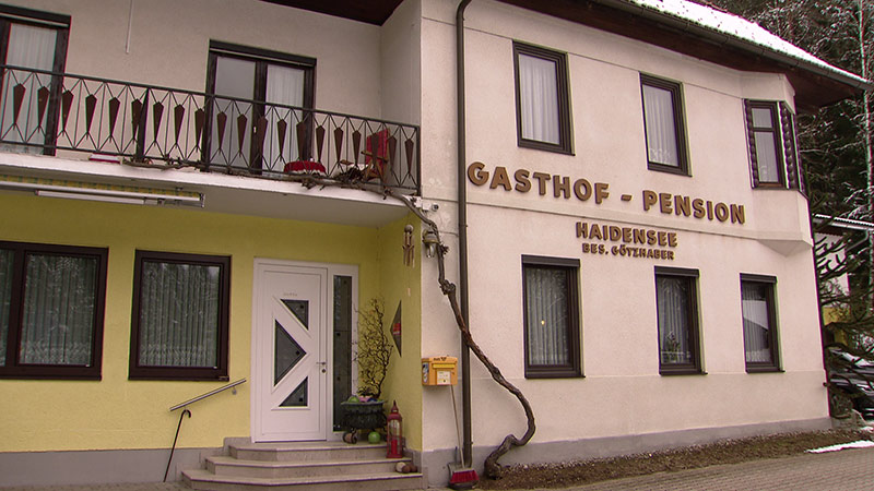 Hartinger Klein FPÖ Pflege
