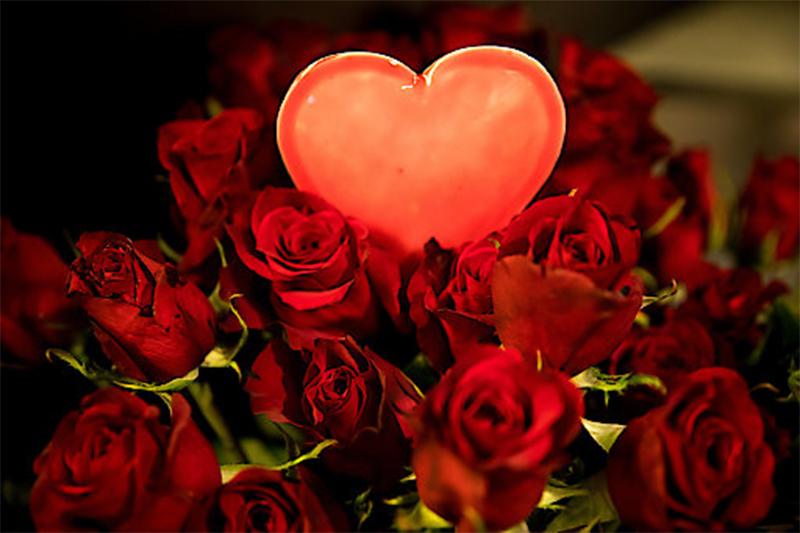 Valentinstag rote Rosen rotes Herz