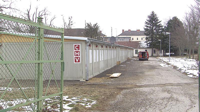 Zukunft Truppenübungsplatz Bruckneudorf