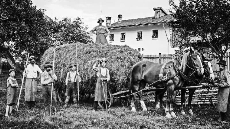 Bauern mit pferdebespanntem Heuwagen