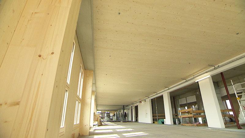 Holzhochhaus wächst