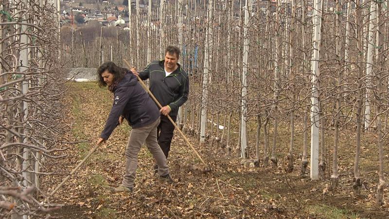 Romana Schuster Pichler bei der Arbeit mit Mann