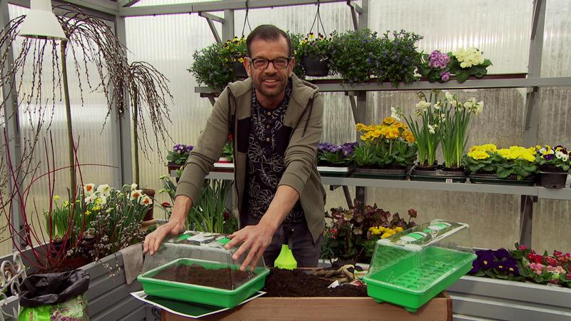Karl Ploberger im Fernsehgarten-Gewächshaus