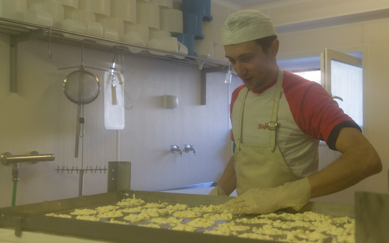 Käsemeister Vinzenz Stern, Camembert-Produktion
