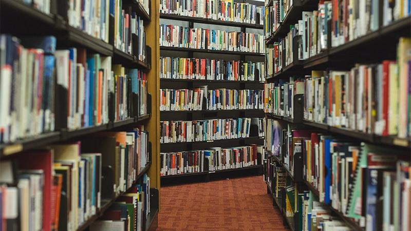Schule Lesen Bücher Rechnen Zahlen
