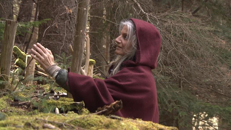 Baumforscherin Astrid streift durch den Wald