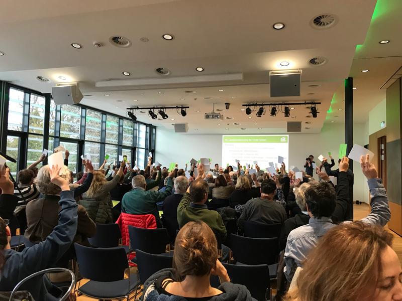 Abstimmung bei den Tiroler Grünen