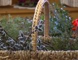 Palmbuschen Brauch Weihe