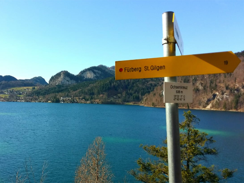 Kräuterwanderung am Wolfgangsee