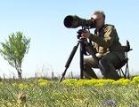 Birdwatcher im Nationalpark