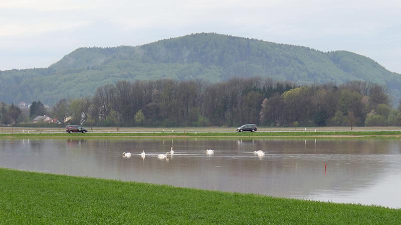 Überfluteter Acker