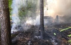 Waldbrand in Sieggraben