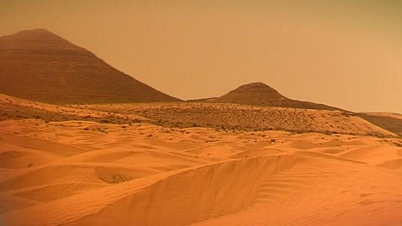 Sahara Staub