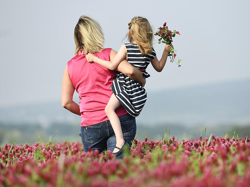 Blumenwiese Mutter Kind