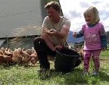 Biobauer beim Hühnerfüttern