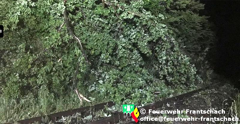 Unwetter Zugstrecke St Getraud Baum umgestürzt