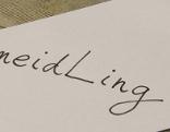 Meidling auf ein Blatt Papier geschrieben