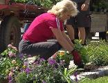 Verschönerungsverein Steinfurt pflanzt Blumen