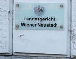 Staatsanwaltschaft Landesgericht Wiener Wr. Neustadt Sujet