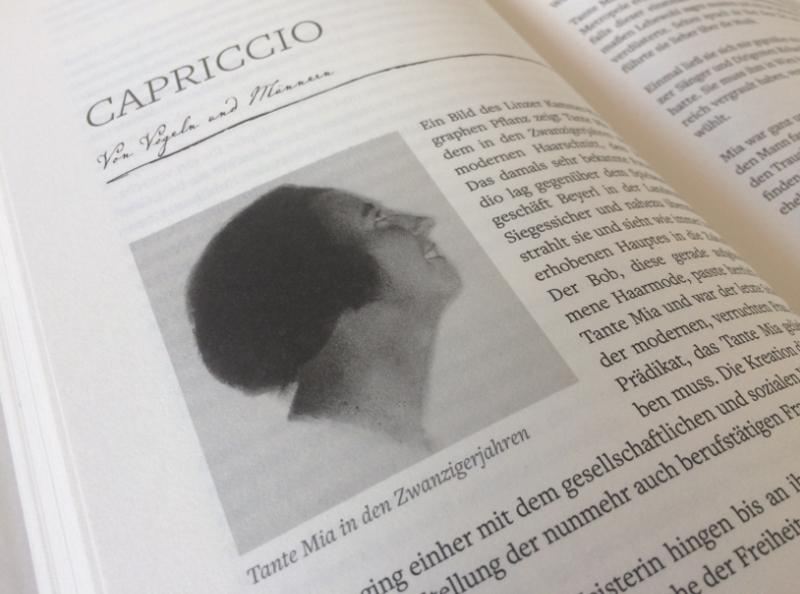 """Buch """"Die Meisterin"""""""