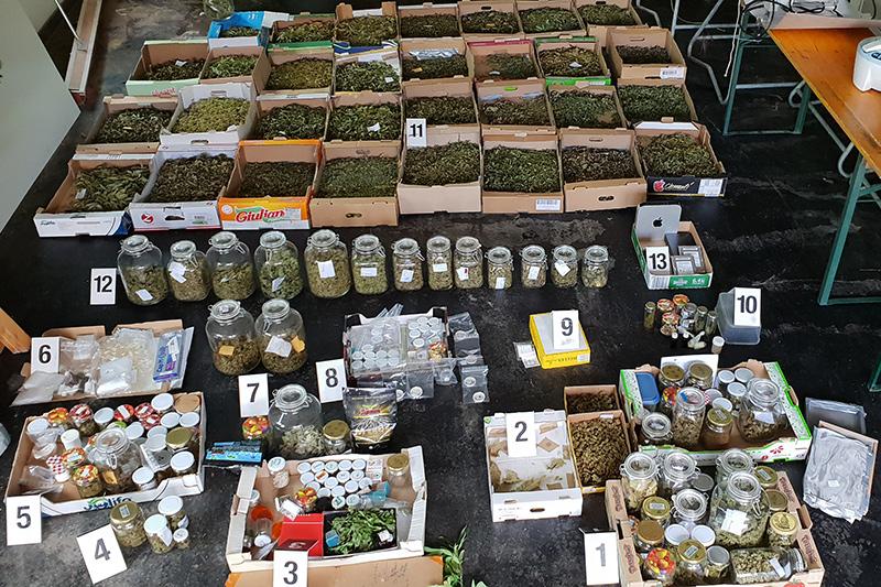 Cannabis Reifnitz