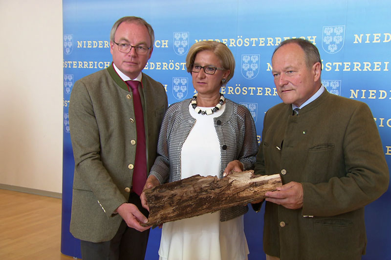 Pressekonferenz Borkenkäfer Mikl-Leitner Pernkopf Schultes
