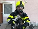 Eine Katze konnte bei einem Wohnungsbrand in Liezen gerettet werden