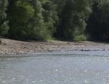 Spatenstich 30,6 Millionen Euro für Hochwasserschutz Schönbühel-Aggsbach
